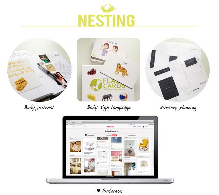 2nd-Trimester_Nesting